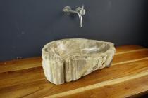 Natursteinwaschbecken versteinertes Holz | Unikat#B - Jan - M05